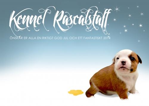 Kennel Rascalstaff